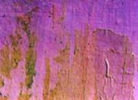 Superficie pintada sobre papel tapiz desprendido